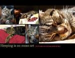 Animal Calendar - Nick Nack