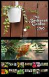 Backyard Garden Calendar