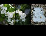 Floral Calendar - Hippo
