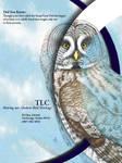 Bird TLC - Owl