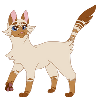 mothflutter // warrior cat oc by Moothic