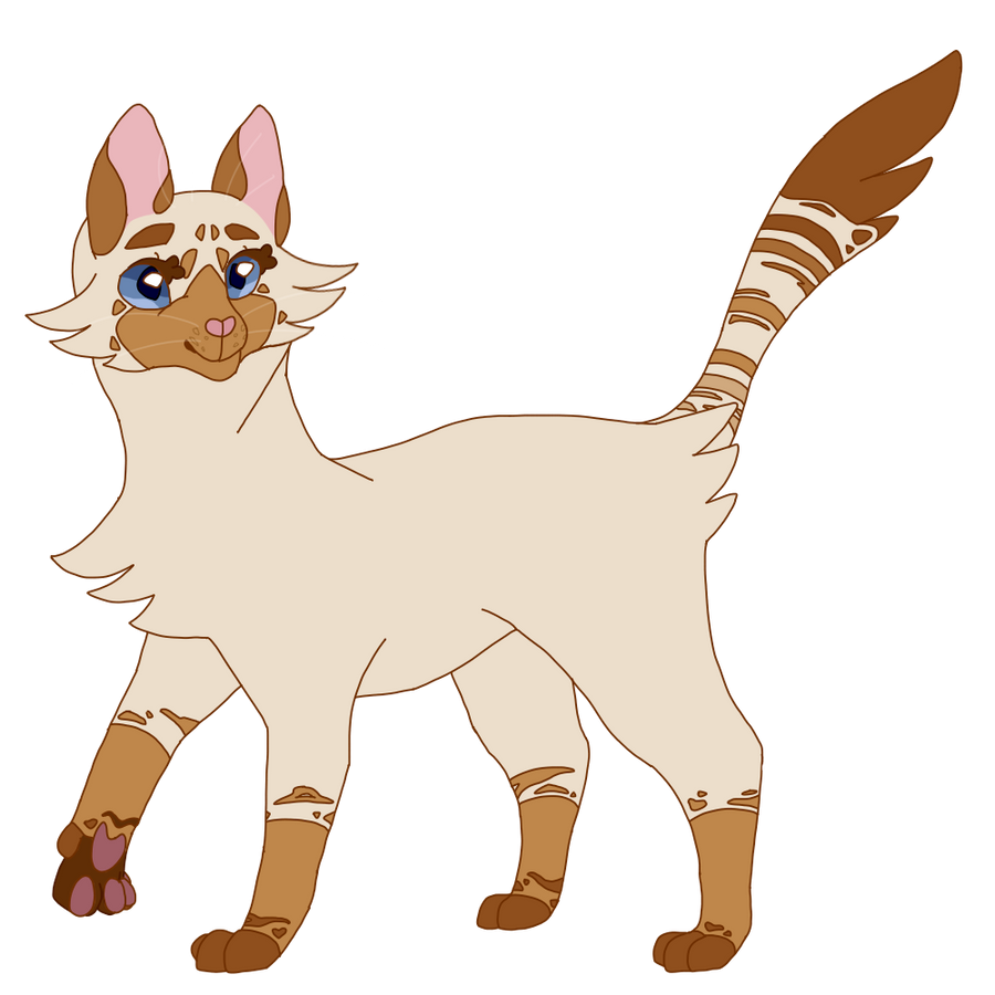 mothflutter // warrior cat oc by Moothic on DeviantArt Warrior Cat Drawings