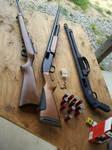 ruger 22 rifle and mossberg shotgun