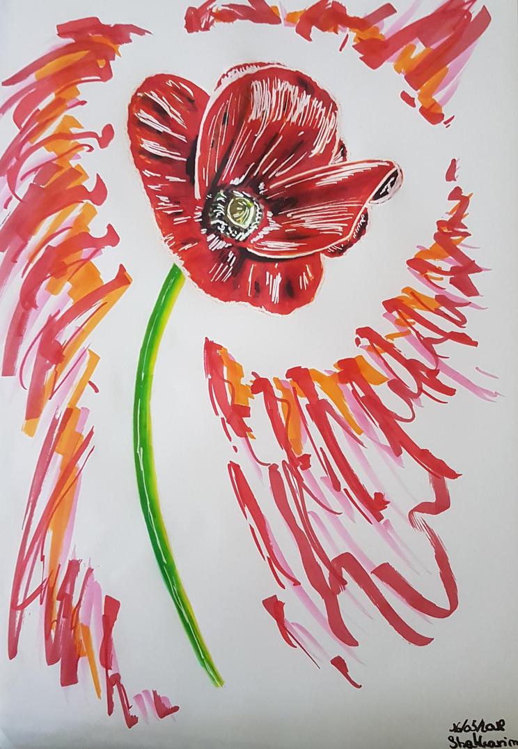 Poppy aspect by Shakkarim