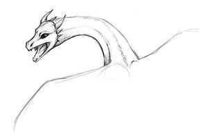 Dragon Sketch by bergrun