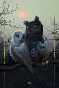 Owl Family Portrait