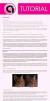 ISO Tutorial for DSLRs by araine86