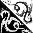 Yin-Yang Dragons by ALLStar500