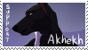 Support Akhekh by xAcidicCanine