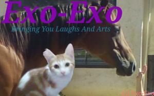 Exo-Exo's Profile Picture