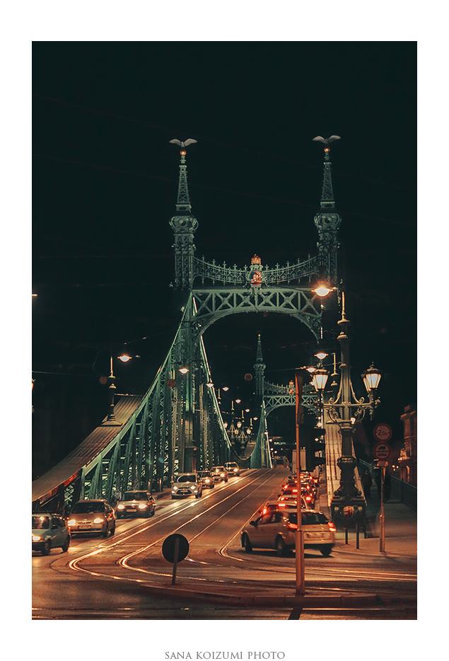Liberty Bridge. by SanaKoizumi