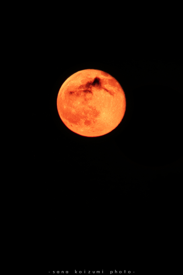 Red moon. by SanaKoizumi