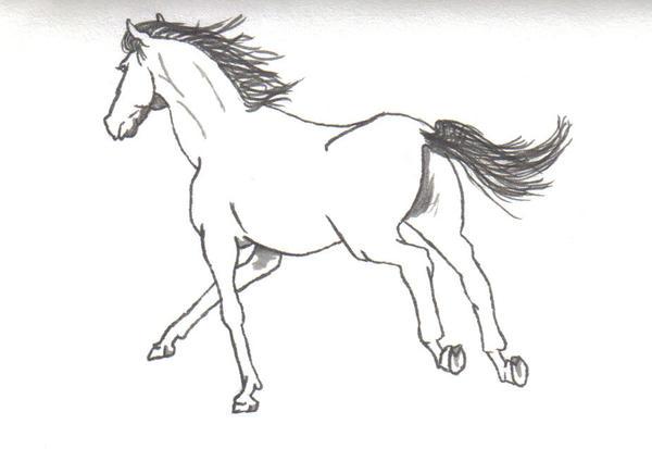 Horses running drawing - photo#21