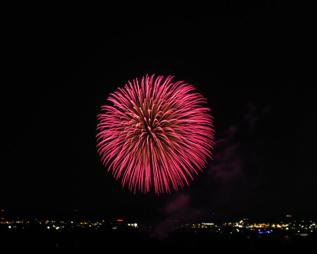 Fireworks flower by LimeStock