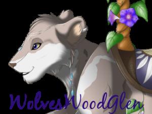 WolvesWoodGlen's Profile Picture