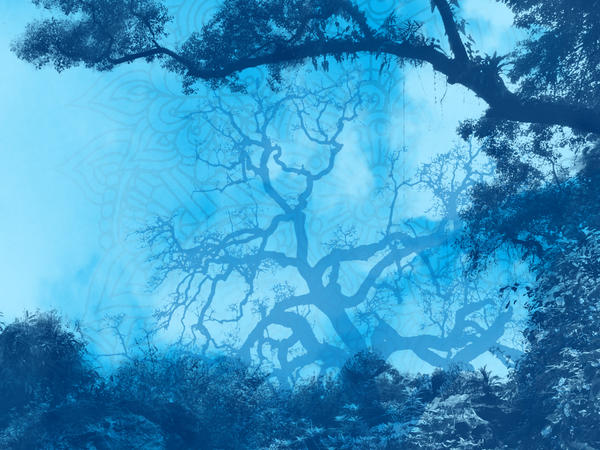 Blue nature theme wallpaper by iamablue monkey on deviantart for Ideanature