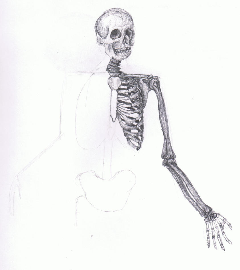 Half-Skeleton by Kiyisha on DeviantArt