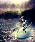 Princess And The Swan