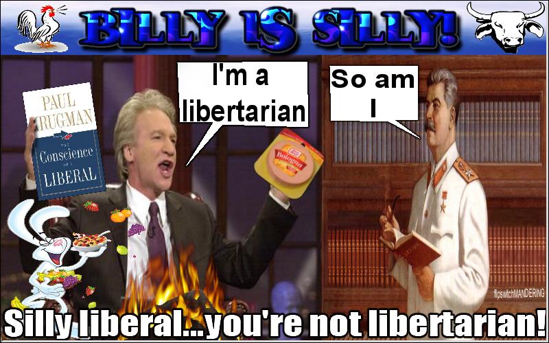 Maher Confused Libertarian