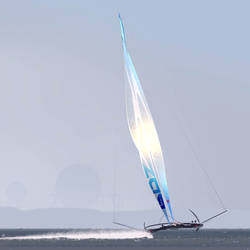 Biomimetic sail by vyle-art