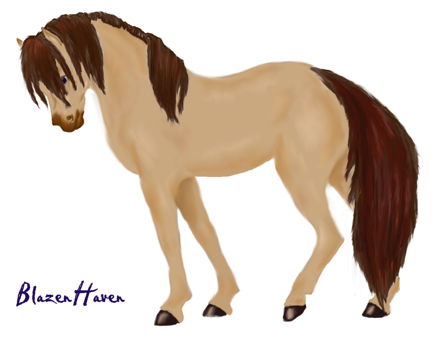 Image Result For Amazing Horse Coloring