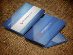 Corporate Simple Business Card Vol:02