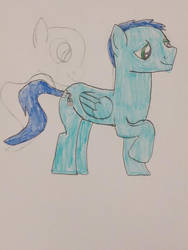 my OC by Shadowpersonguy