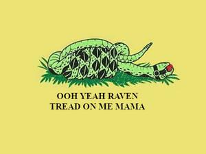 Suggestive Beast Boy Themed Libertarian Snake Flag