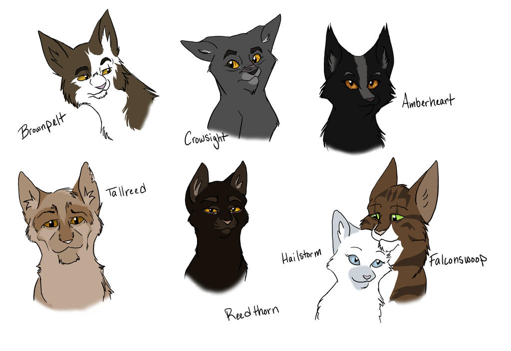 Images Of Warriors Cats Windclan