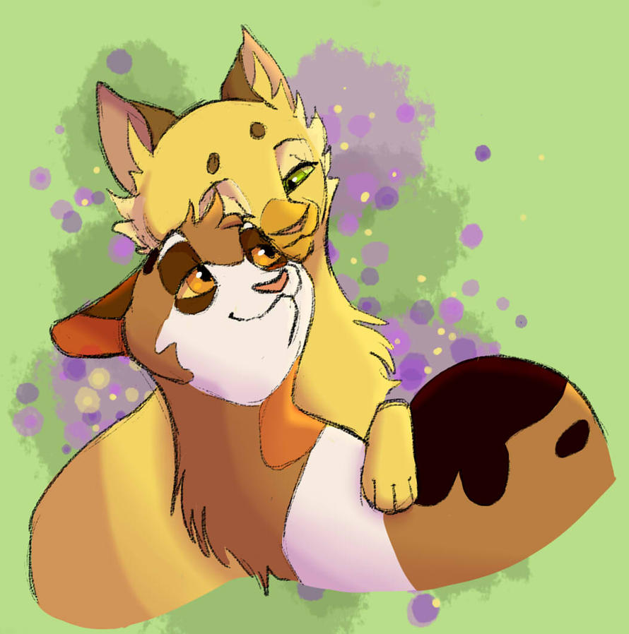How Well Do You Know Warrior Cats