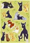 Spottedshadow-Before StarClan Battles