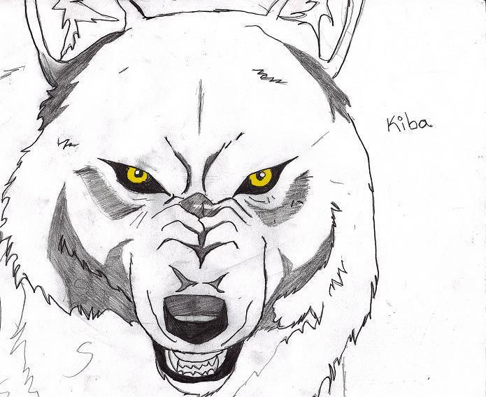 Ficha Vinc :D Wolfs_rain___kiba_by_bloodyrose91