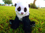 Handmade Poseable Baby Panda