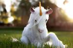 Handmade Poseable Unicorn ( Youtube Video)