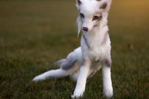 Wolf Art Doll (Youtube Video) by KaypeaCreations