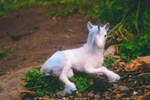 The Last Unicorn Art Doll