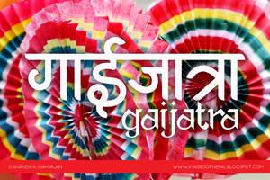 Gaijatra by lalitkala