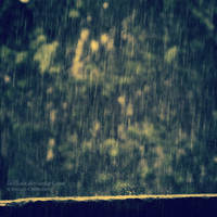 Rain and Bokeh by lalitkala