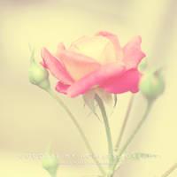 ... HOPELESS DREAMS ... by lalitkala