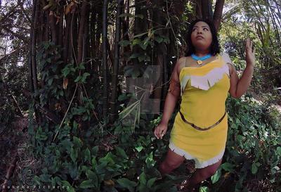 Pocahontas by reinapantera