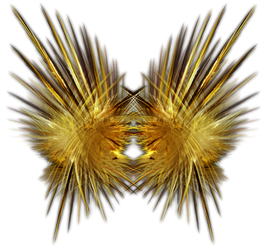 Feathery Fractal-Object Stock