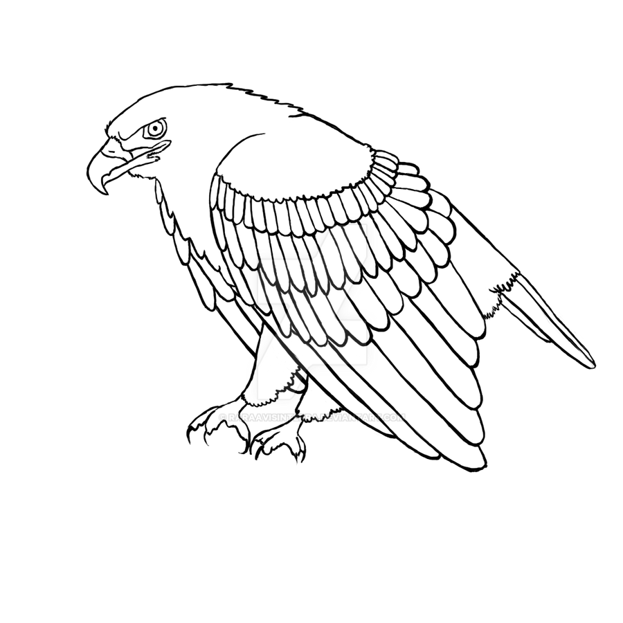 Line Drawing Eagle : Line art eagle pixshark images galleries with