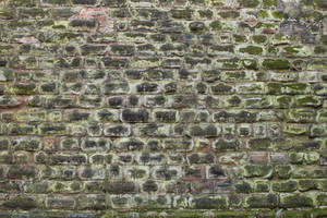 Wall Texture - 8 by AGF81