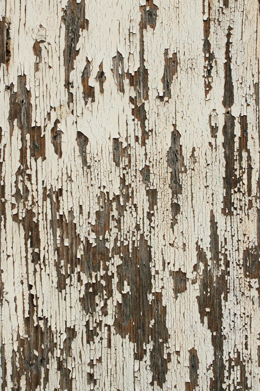 Close-up Texture - 3
