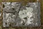 Stone Texture - 5