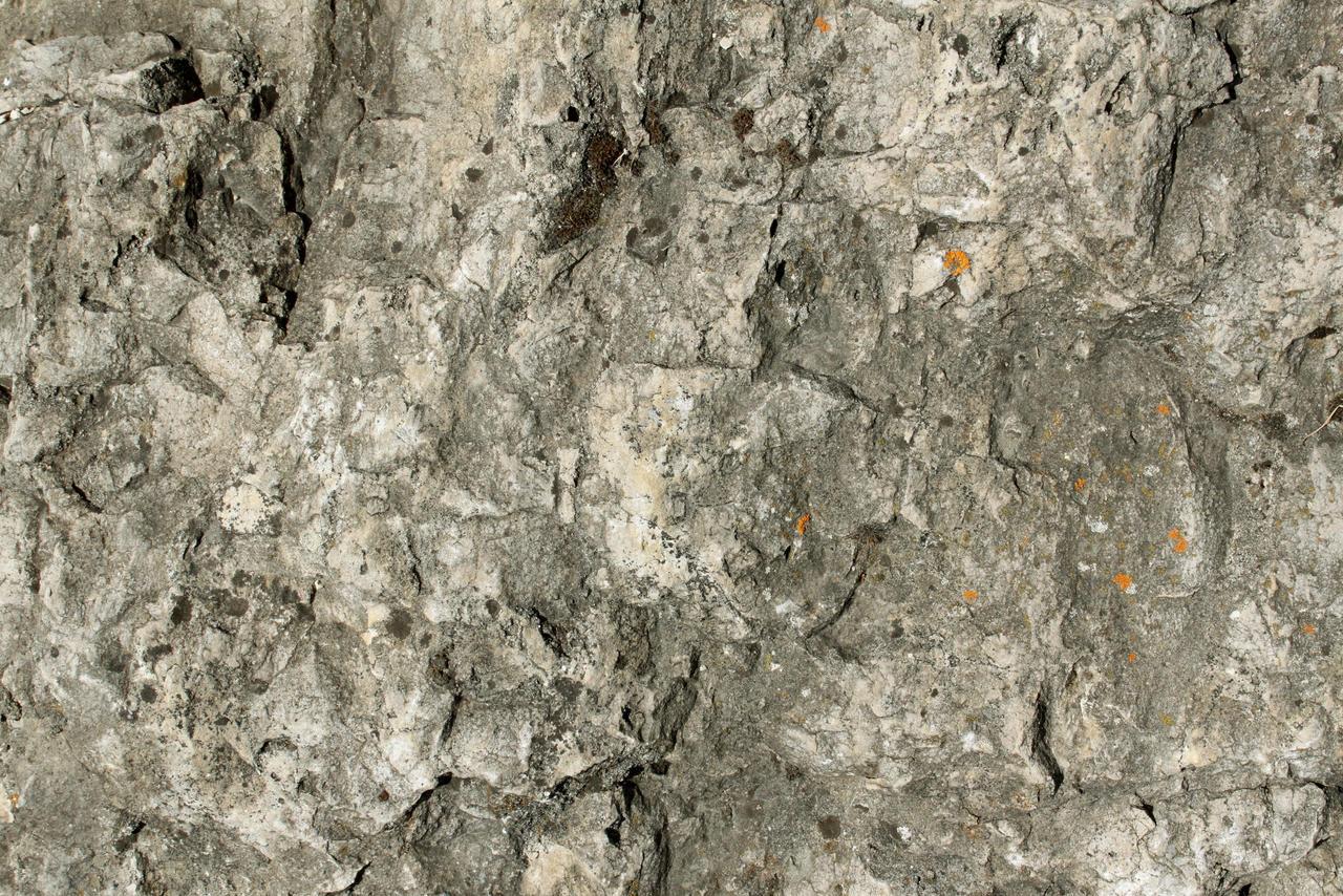 Stone Texture - 10