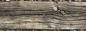 Wood Texture - 20