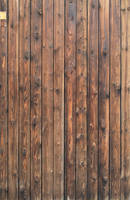 Wood Texture - 24 by AGF81