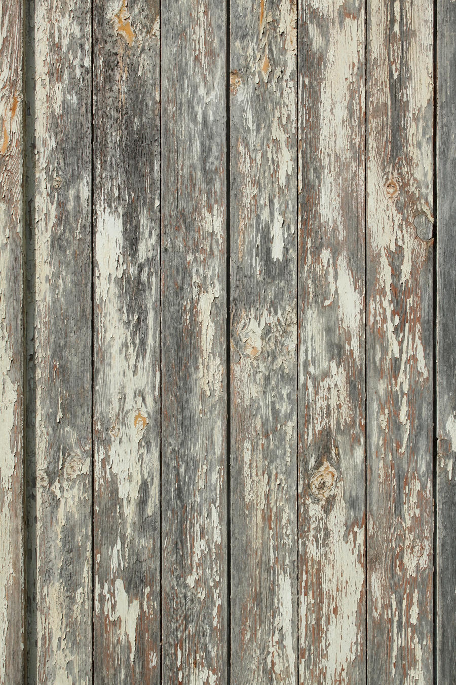 Wood Texture - 26