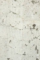 Close-up Texture - 11 by AGF81